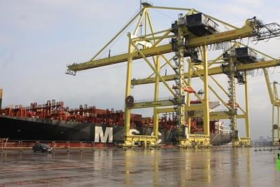 Таможенники сократили срок пребывния контейнеров в Большом порту Санкт-Петербург на 18 часов