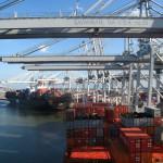 Контейнерный трафик порта Саванна увеличился на 12,9%