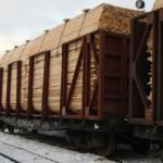 Перевозка грузов на железнодорожных платформах