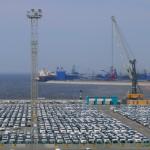 За три года объем железнодорожных грузов в порту Усть-Луга вырос более чем в два раза