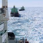 Порты Арктического бассейна грузооборот за 9 месяцев и перспективы
